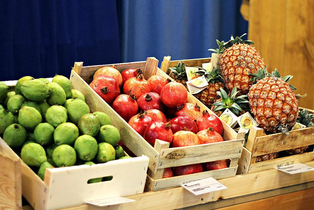Obst – Foto: Sonja Lukenda