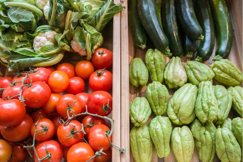 Gemüse – Foto: Benjamin Stollenberg