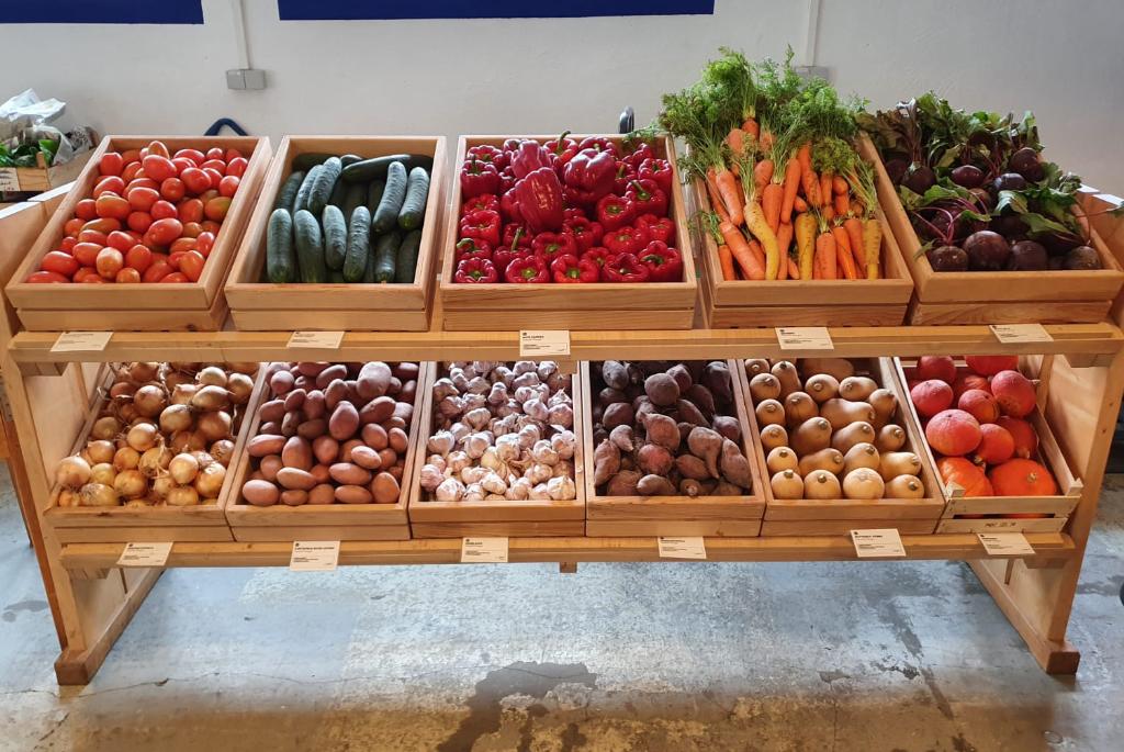 Gemüse – Foto: Matthias Kästner